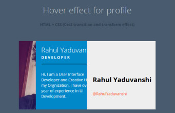 profile view animation hover effect