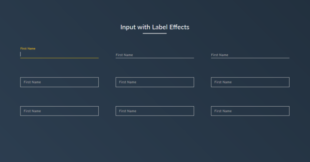 input focus effect